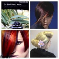 wash house exp, Restyling,Permanant Bright Colours & Occasional hair up/styling.